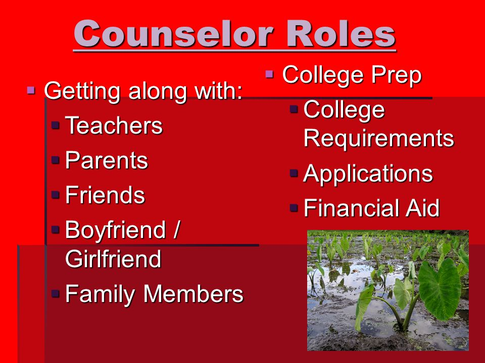 Counselor Roles  Getting along with:  Teachers  Parents  Friends  Boyfriend / Girlfriend  Family Members  College Prep  College Requirements  Applications  Financial Aid