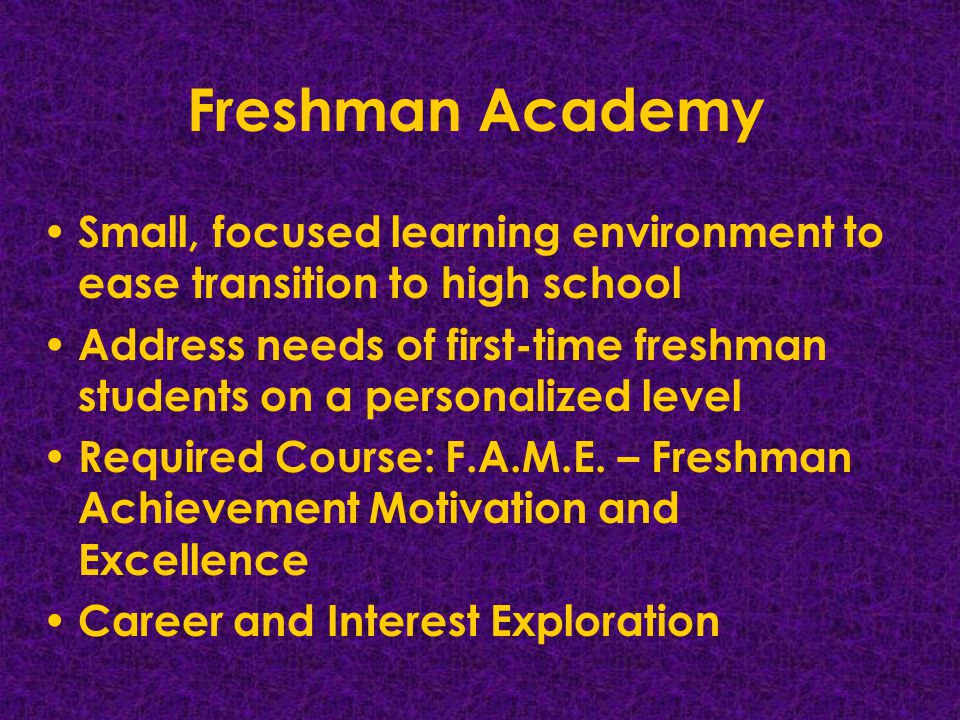 Freshman Academy Small, focused learning environment to ease transition to high school Address needs of first-time freshman students on a personalized level Required Course: F.A.M.E.