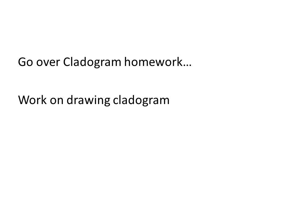 Go over Cladogram homework… Work on drawing cladogram