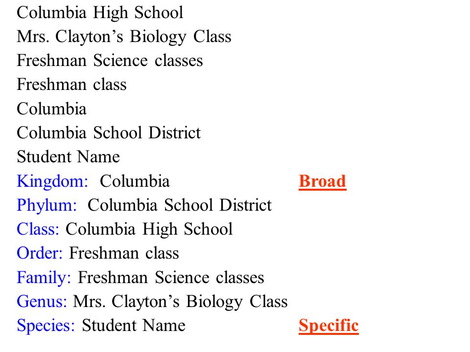 Columbia High School Mrs.