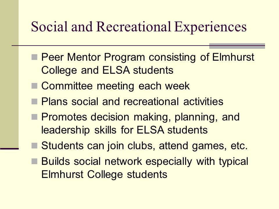 Peer Mentor Program consisting of Elmhurst College and ELSA students Committee meeting each week Plans social and recreational activities Promotes dec