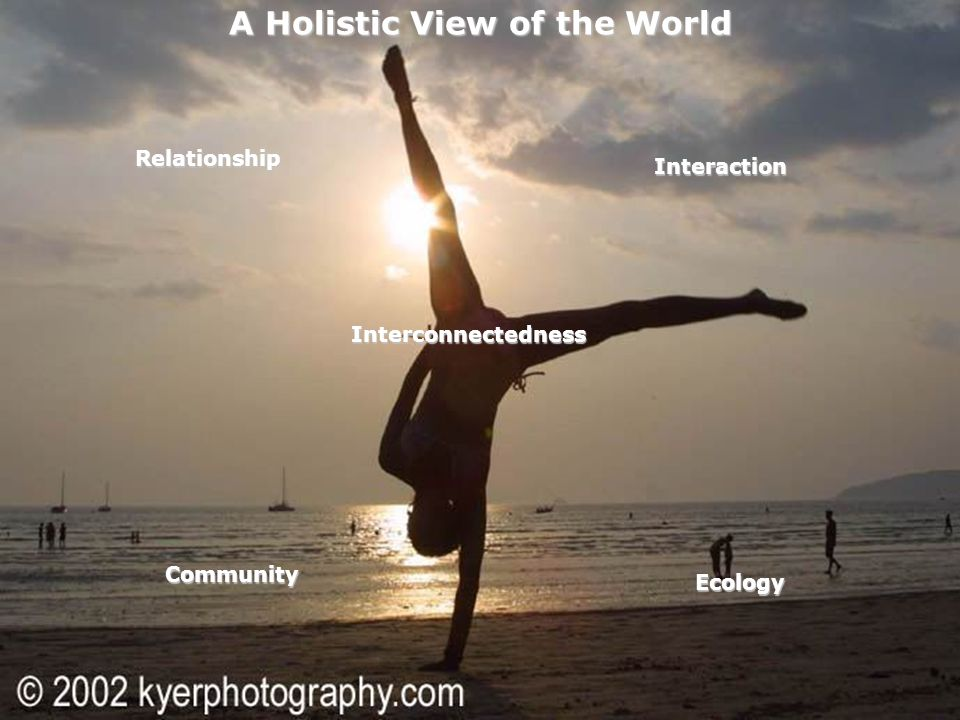 16 A Holistic View of the World Relationship Interaction Interconnectedness Ecology Community