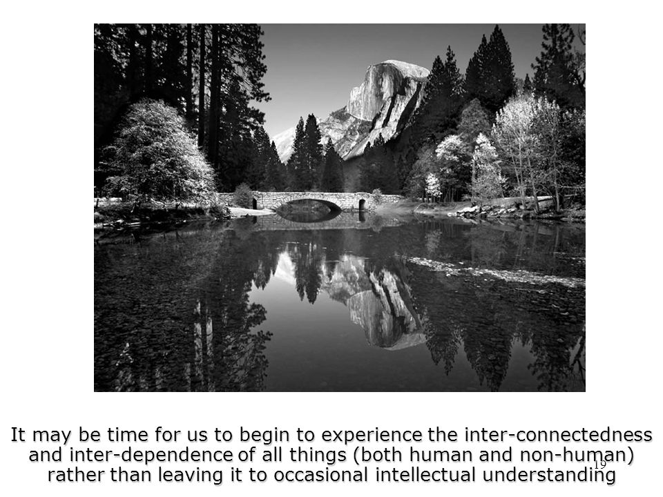 19 It may be time for us to begin to experience the inter-connectedness and inter-dependence of all things (both human and non-human) rather than leaving it to occasional intellectual understanding
