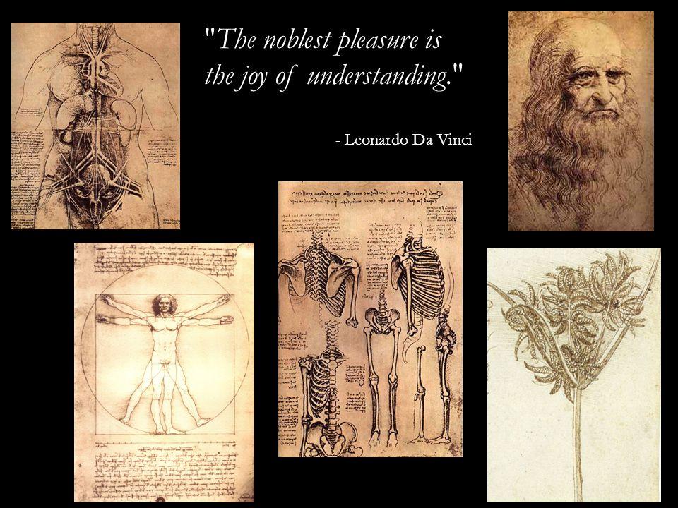 The noblest pleasure is the joy of understanding. - Leonardo Da Vinci