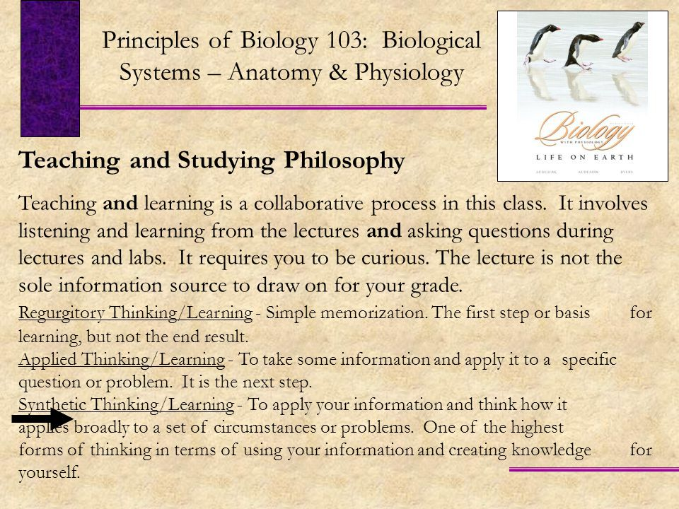 Teaching and Studying Philosophy Teaching and learning is a collaborative process in this class.