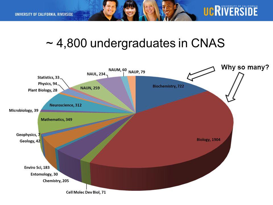 ~ 4,800 undergraduates in CNAS Why so many?