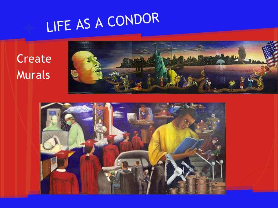 LIFE AS A CONDOR Create Murals