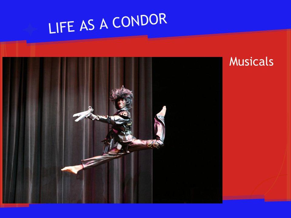 LIFE AS A CONDOR Musicals