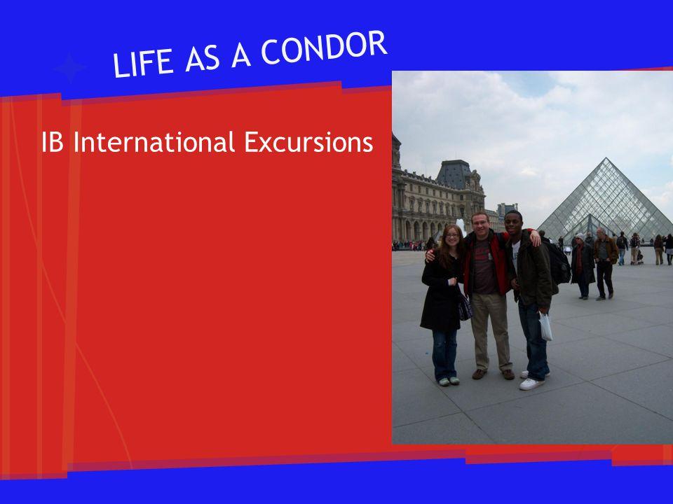 LIFE AS A CONDOR IB International Excursions