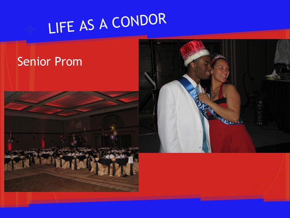 LIFE AS A CONDOR Senior Prom