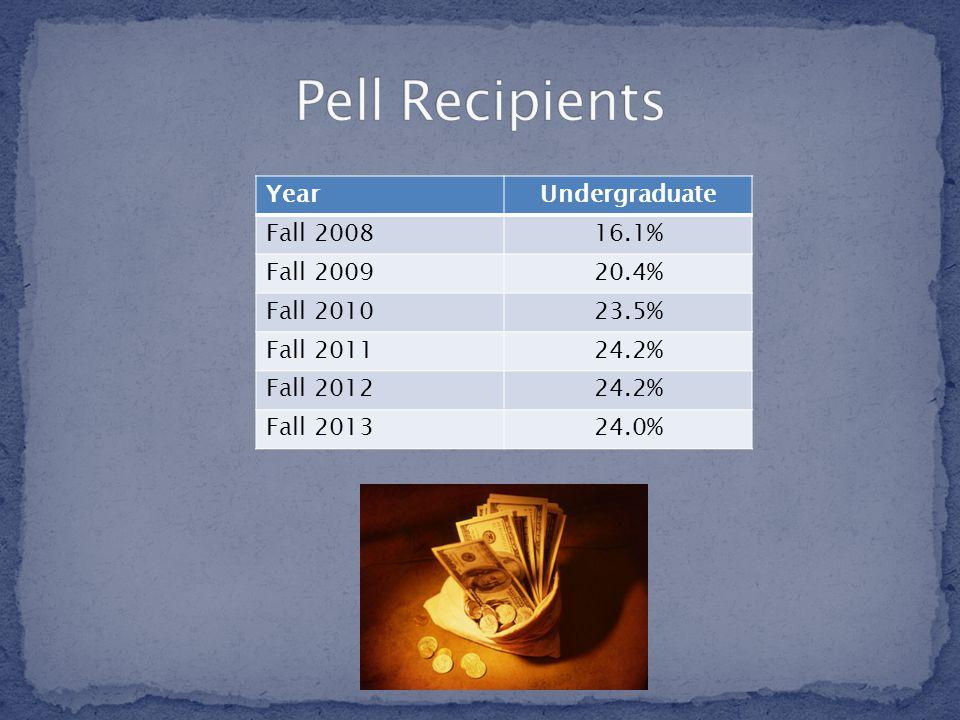 YearUndergraduate Fall 200816.1% Fall 200920.4% Fall 201023.5% Fall 201124.2% Fall 201224.2% Fall 201324.0%