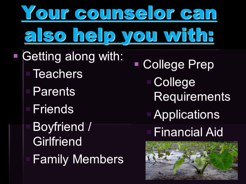Your counselor can also help you with:  Getting along with:  Teachers  Parents  Friends  Boyfriend / Girlfriend  Family Members  College Prep  College Requirements  Applications  Financial Aid