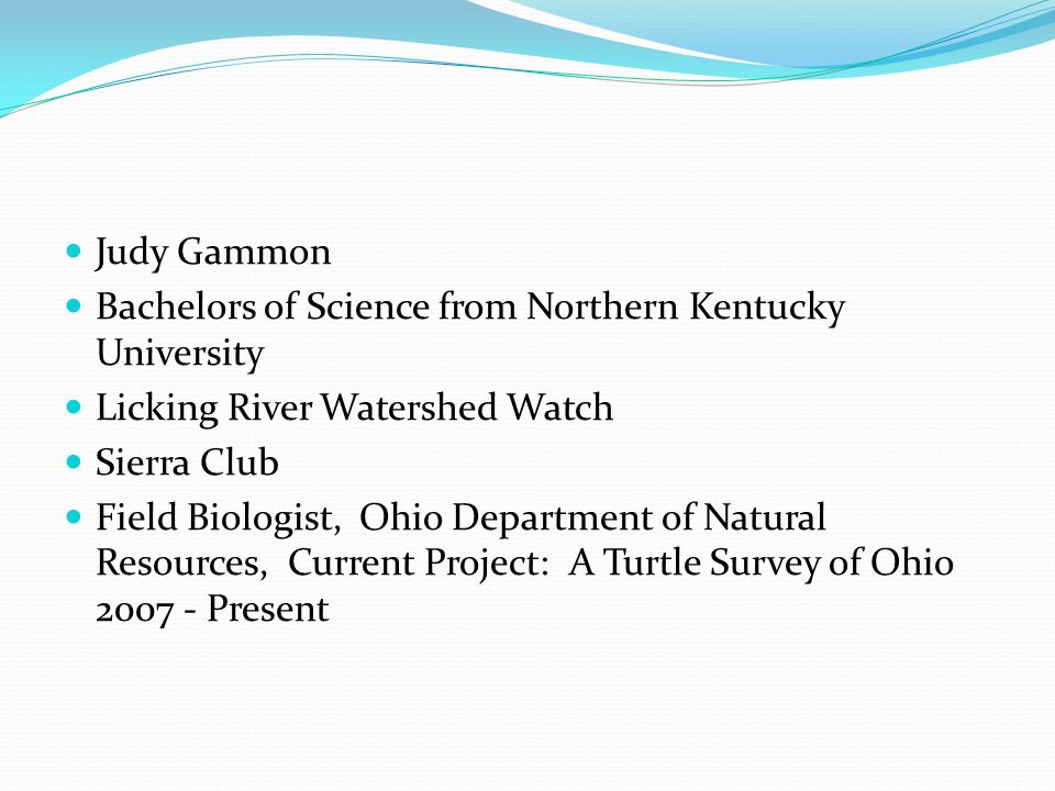 Judy Gammon Bachelors of Science from Northern Kentucky University Licking River Watershed Watch Sierra Club Field Biologist, Ohio Department of Natural Resources, Current Project: A Turtle Survey of Ohio 2007 - Present
