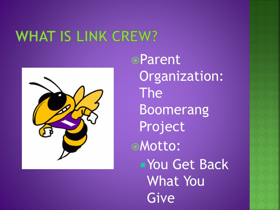 Parent Organization: The Boomerang Project  Motto:  You Get Back What You Give