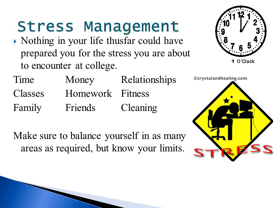  Nothing in your life thusfar could have prepared you for the stress you are about to encounter at college.
