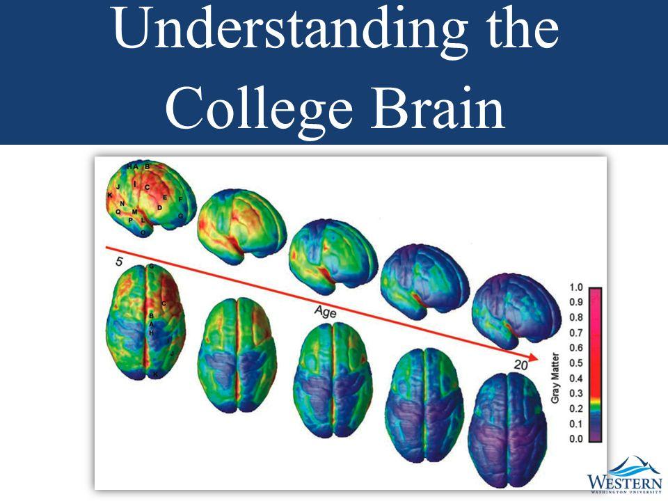 Understanding the College Brain