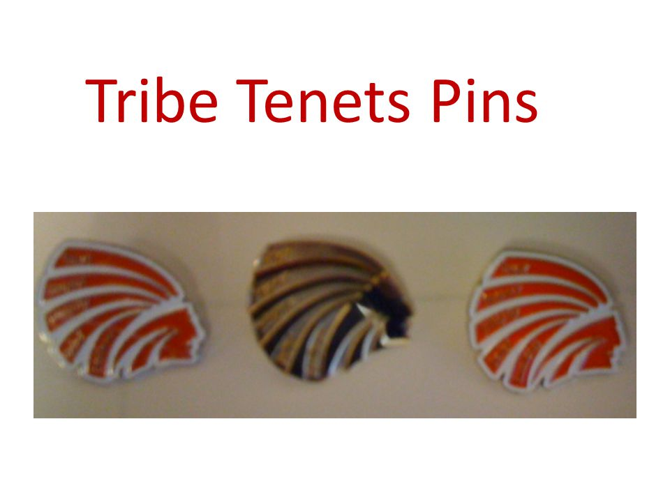 Tribe Tenets Pins