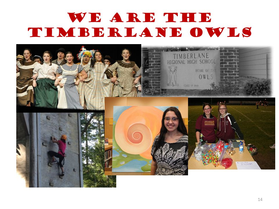 We are the Timberlane Owls 14