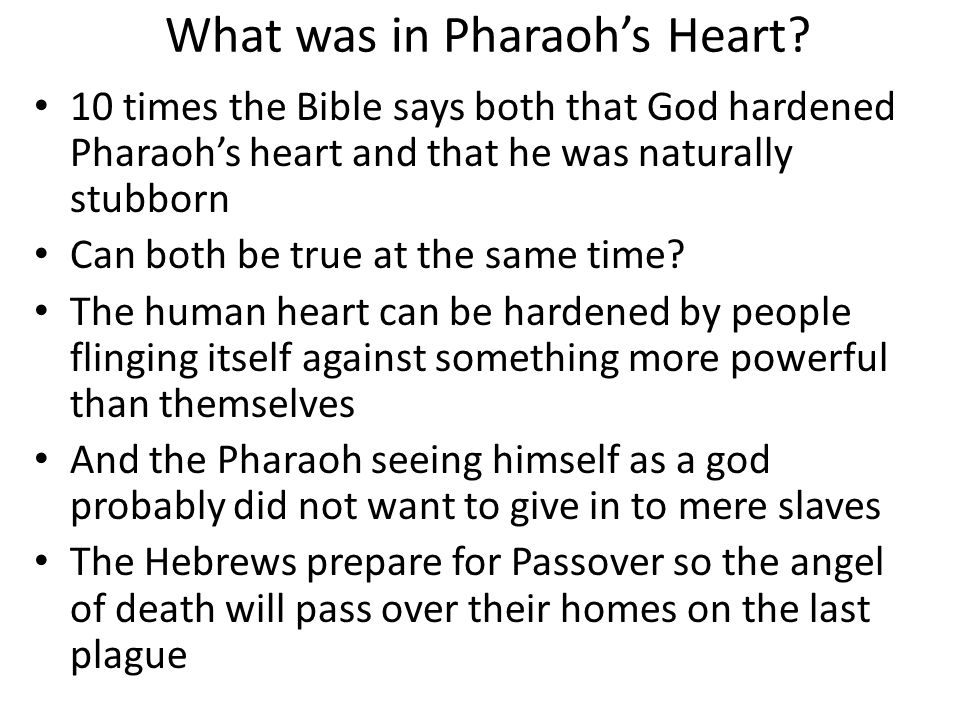 What was in Pharaoh's Heart? 10 times the Bible says both that God hardened Pharaoh's heart and that he was naturally stubborn Can both be true at the