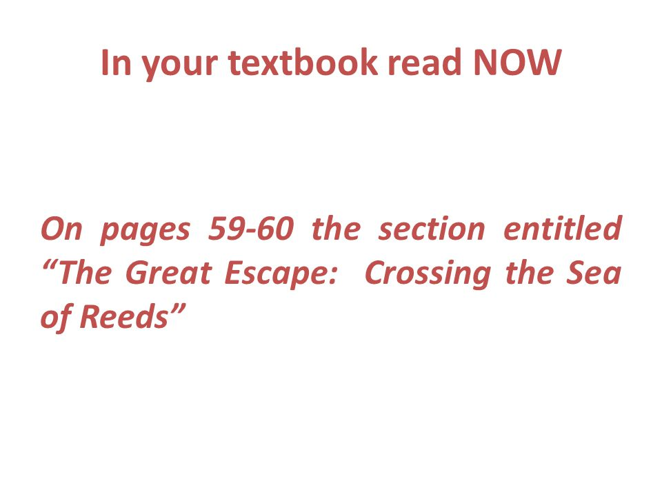 """In your textbook read NOW On pages 59-60 the section entitled """"The Great Escape: Crossing the Sea of Reeds"""""""