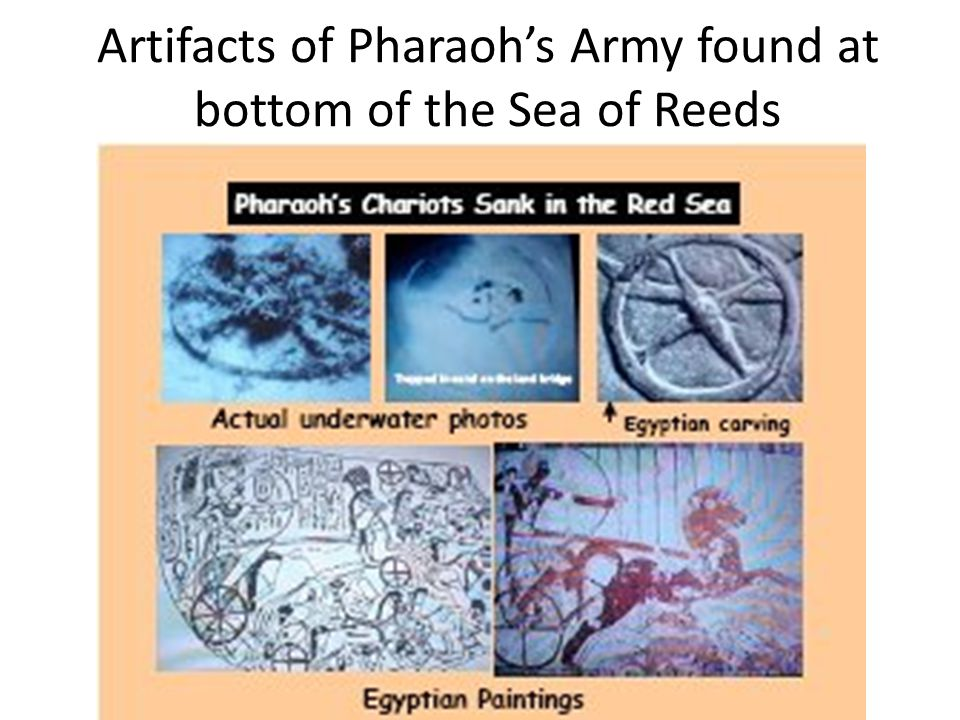 Artifacts of Pharaoh's Army found at bottom of the Sea of Reeds