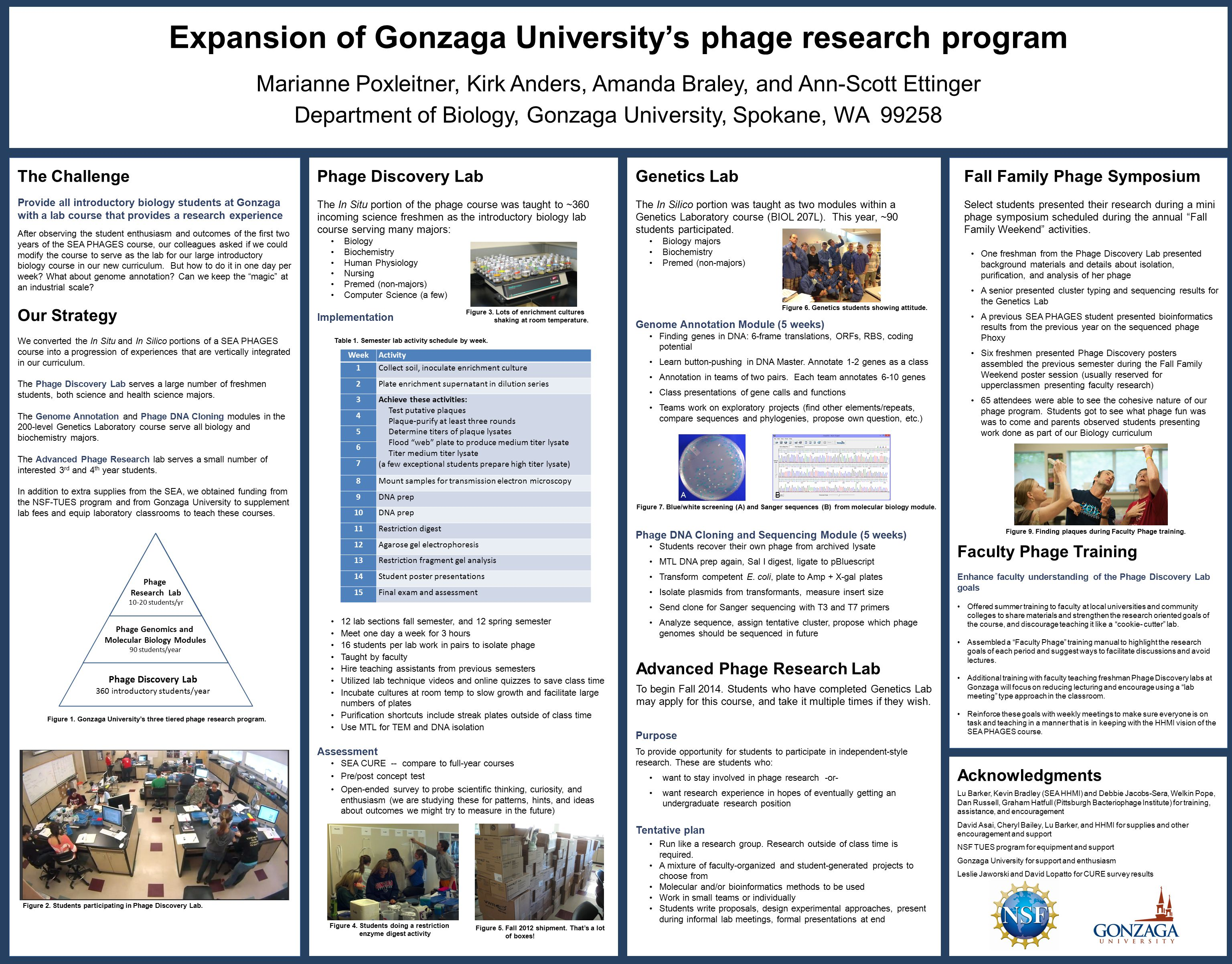 Expansion of Gonzaga University's phage research program Marianne Poxleitner, Kirk Anders, Amanda Braley, and Ann-Scott Ettinger Department of Biology, Gonzaga University, Spokane, WA 99258 The Challenge Provide all introductory biology students at Gonzaga with a lab course that provides a research experience After observing the student enthusiasm and outcomes of the first two years of the SEA PHAGES course, our colleagues asked if we could modify the course to serve as the lab for our large introductory biology course in our new curriculum.