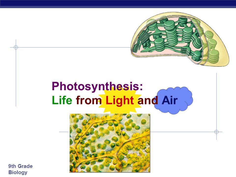 9th Grade Biology