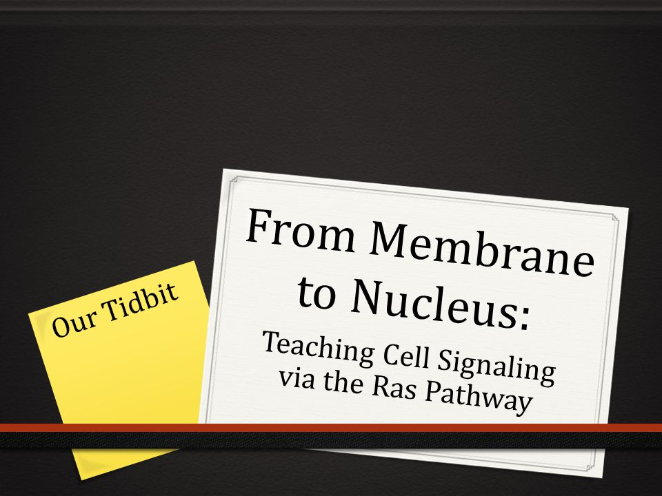From Membrane to Nucleus: Teaching Cell Signaling via the Ras Pathway Our Tidbit
