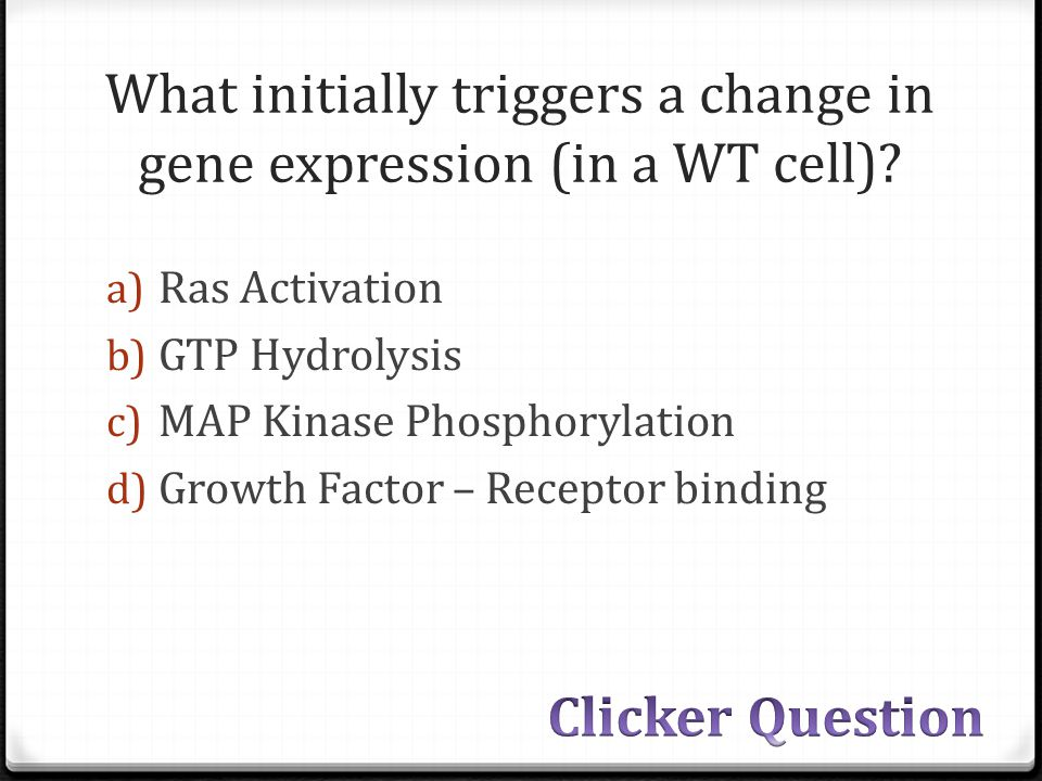 What initially triggers a change in gene expression (in a WT cell).