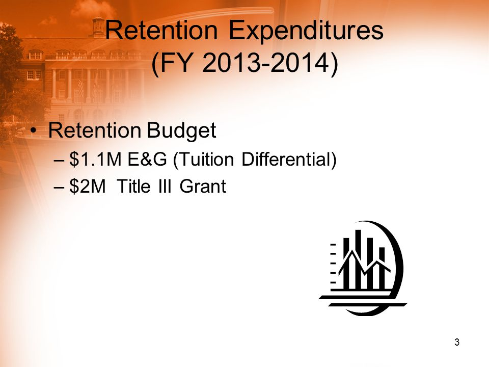 Retention Expenditures (FY 2013-2014) Retention Budget –$1.1M E&G (Tuition Differential) –$2M Title III Grant 3