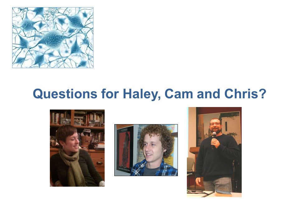 Questions for Haley, Cam and Chris