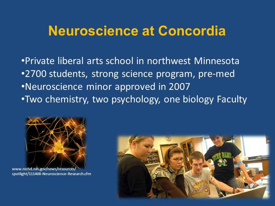 Neuroscience at Concordia Private liberal arts school in northwest Minnesota 2700 students, strong science program, pre-med Neuroscience minor approved in 2007 Two chemistry, two psychology, one biology Faculty www.nichd.nih.gov/news/resources/ spotlight/111408-Neuroscience-Research.cfm