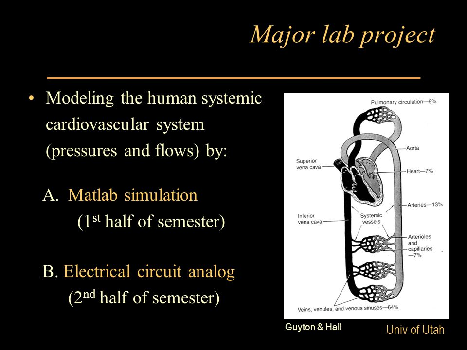 Univ of Utah Major lab project Modeling the human systemic cardiovascular system (pressures and flows) by: A.Matlab simulation (1 st half of semester) B.