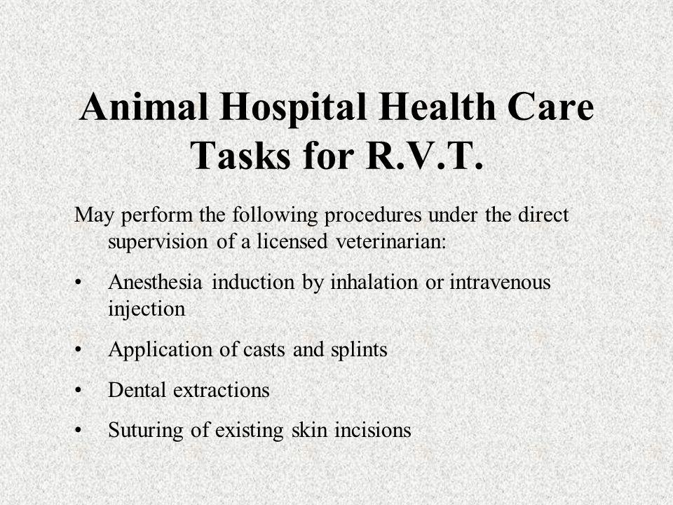 Animal Hospital Health Care Tasks for R.V.T.