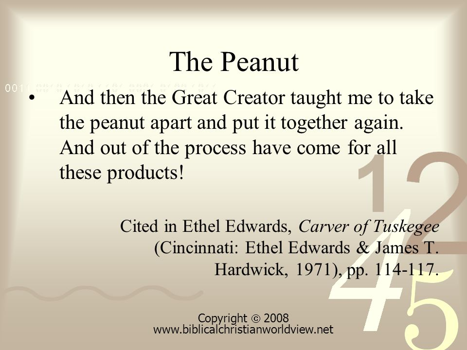 The Peanut And then the Great Creator taught me to take the peanut apart and put it together again.