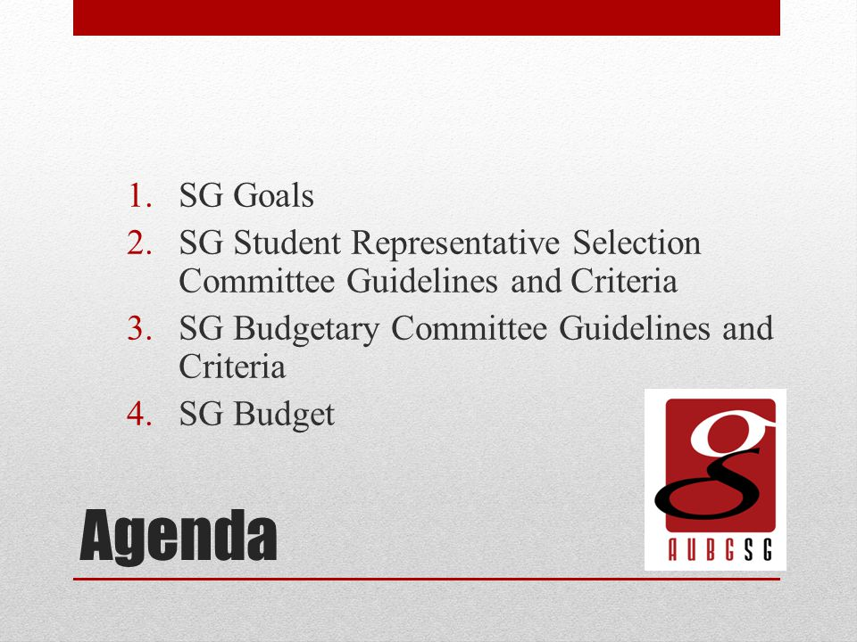 Agenda 1.SG Goals 2.SG Student Representative Selection Committee Guidelines and Criteria 3.SG Budgetary Committee Guidelines and Criteria 4.SG Budget
