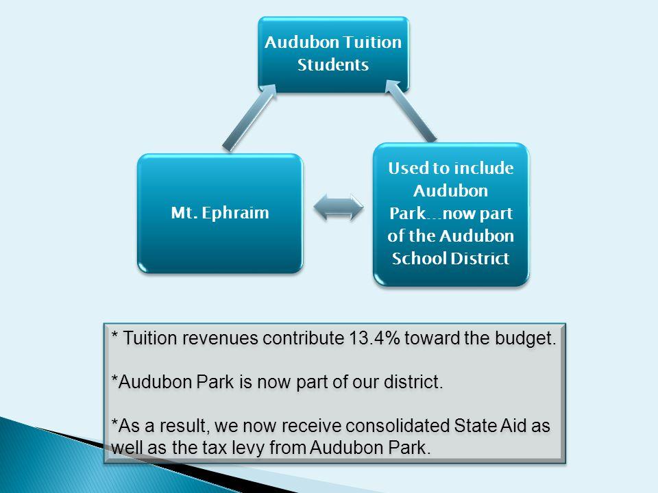 Audubon Tuition Students Used to include Audubon Park…now part of the Audubon School District Mt.