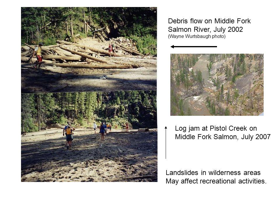 Debris flow on Middle Fork Salmon River, July 2002 (Wayne Wurtsbaugh photo) Log jam at Pistol Creek on Middle Fork Salmon, July 2007 Landslides in wil