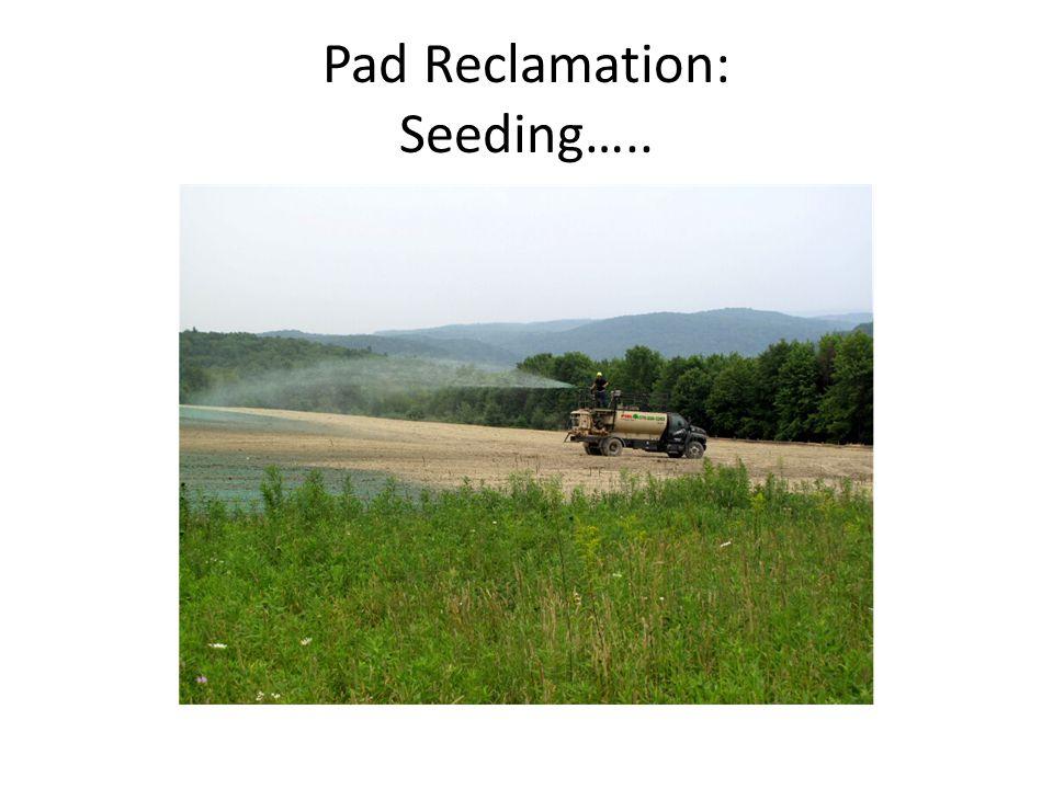 Pad Reclamation: Seeding…..