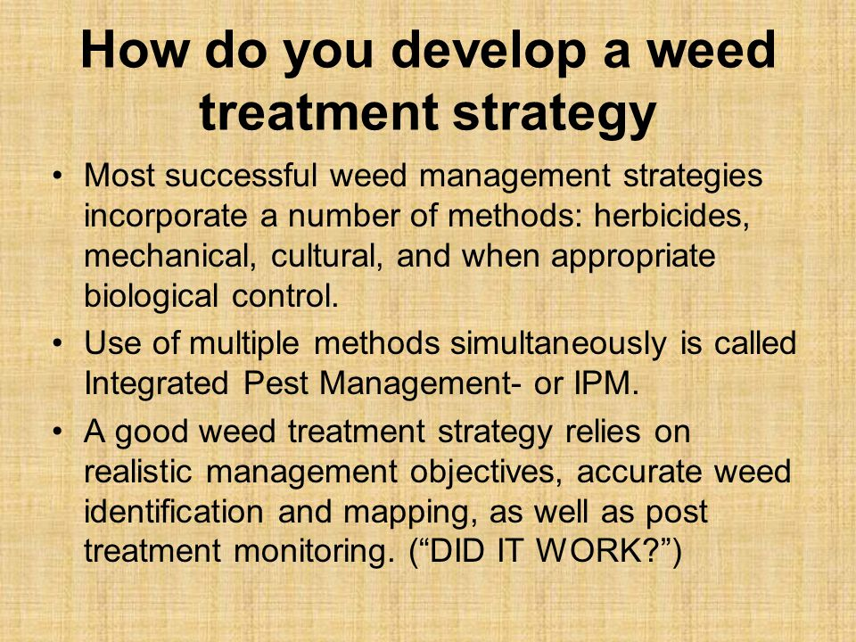 How do you develop a weed treatment strategy Most successful weed management strategies incorporate a number of methods: herbicides, mechanical, cultural, and when appropriate biological control.