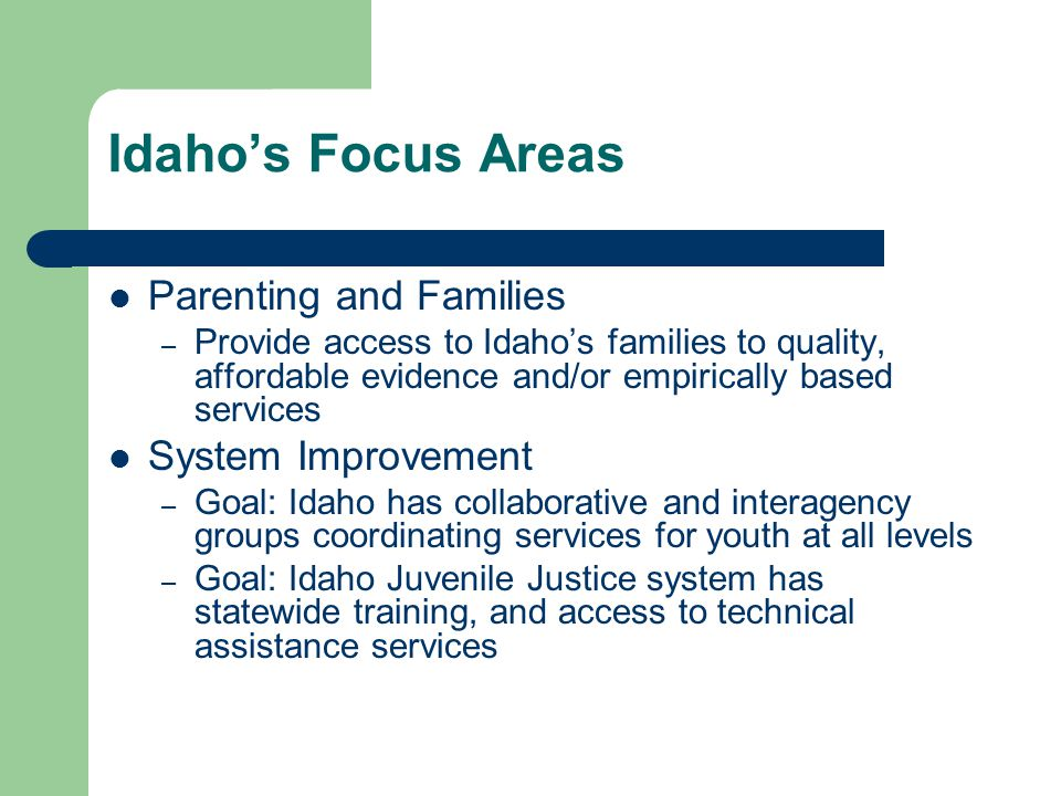 Idaho's Focus Areas Parenting and Families – Provide access to Idaho's families to quality, affordable evidence and/or empirically based services System Improvement – Goal: Idaho has collaborative and interagency groups coordinating services for youth at all levels – Goal: Idaho Juvenile Justice system has statewide training, and access to technical assistance services