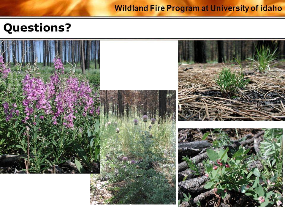 Wildland Fire Program at University of idaho Questions