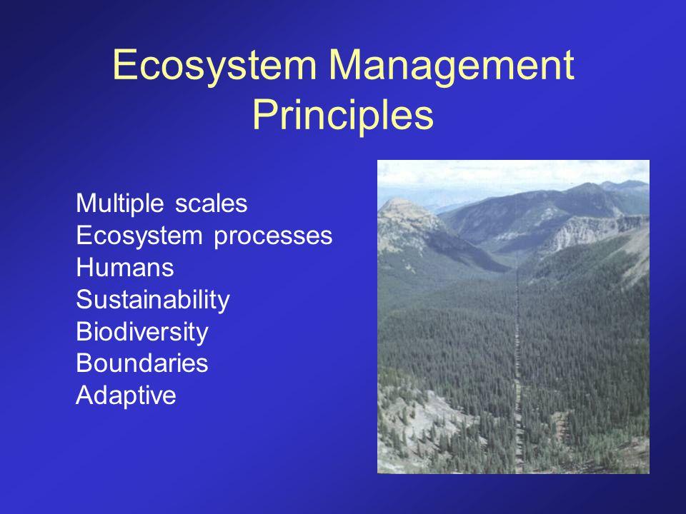 Ecosystem Management Principles Multiple scales Ecosystem processes Humans Sustainability Biodiversity Boundaries Adaptive