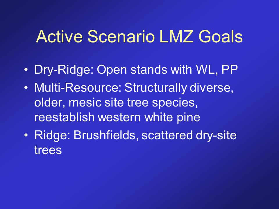 Active Scenario LMZ Goals Dry-Ridge: Open stands with WL, PP Multi-Resource: Structurally diverse, older, mesic site tree species, reestablish western