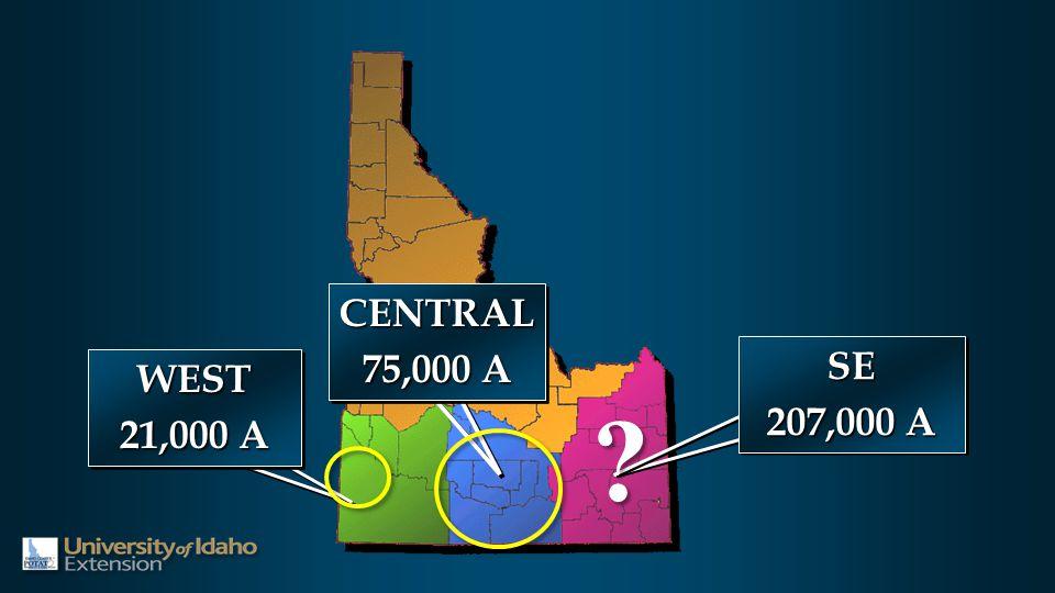 WEST 21,000 A WEST SE 207,000 A SE CENTRAL 75,000 A CENTRAL