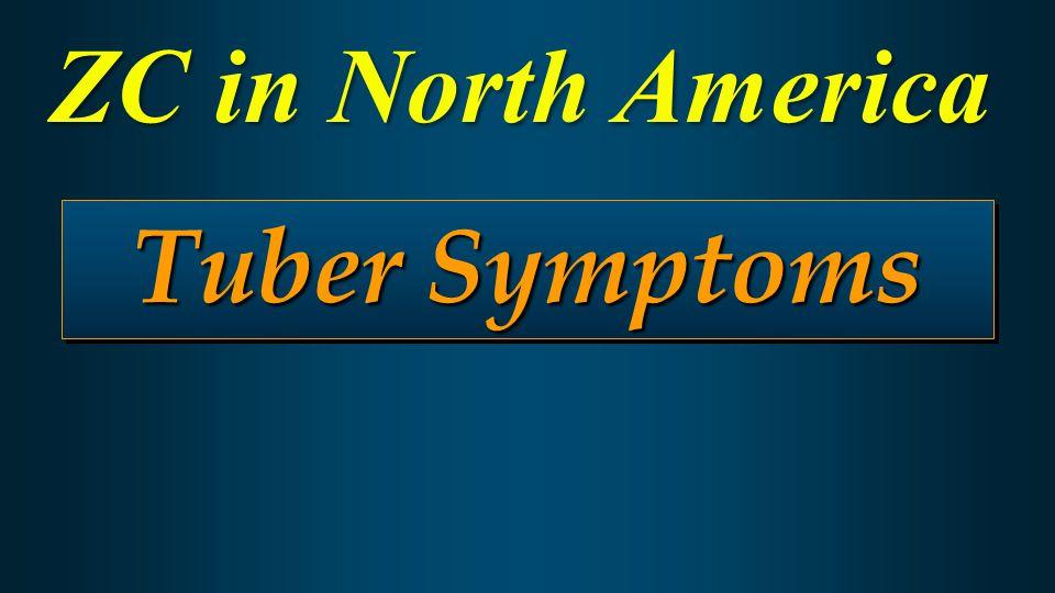 Tuber Symptoms ZC in North America