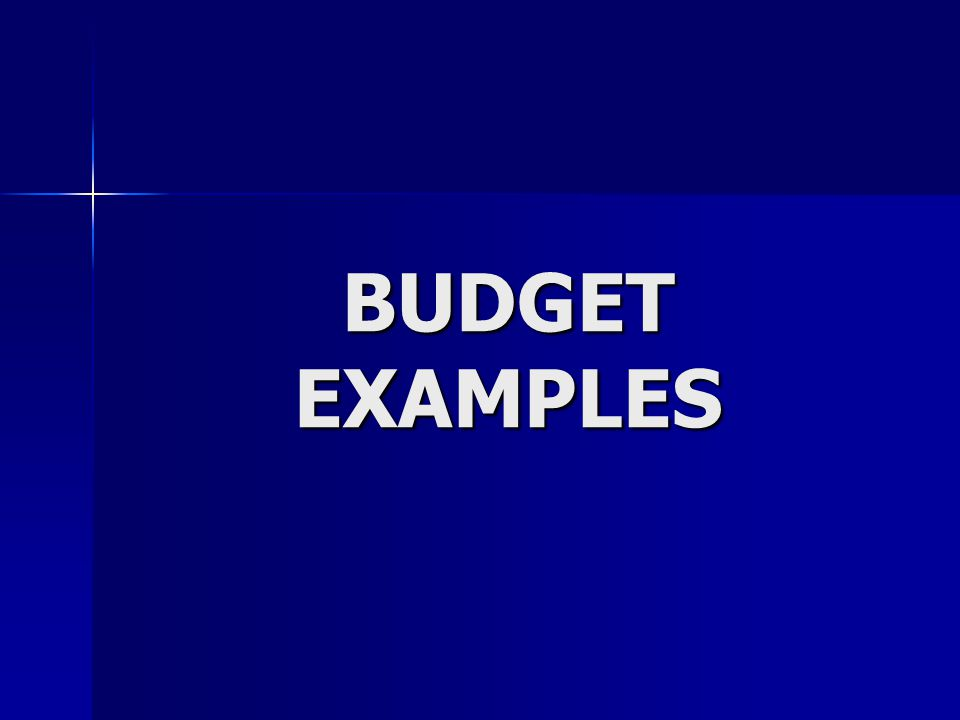 BUDGET EXAMPLES