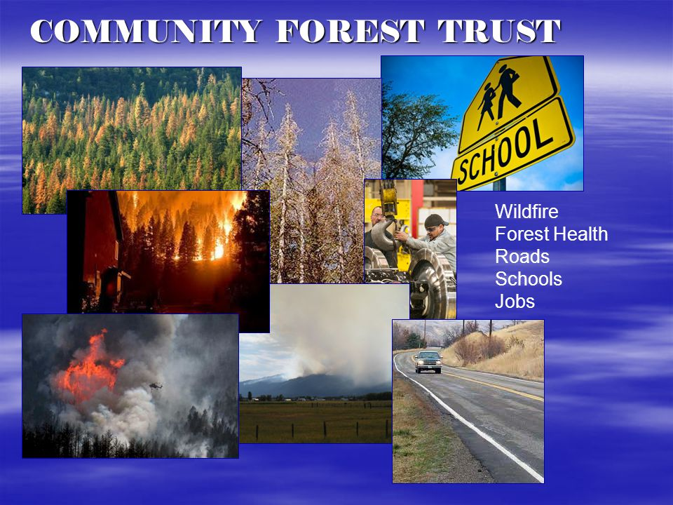 The Solution is Utilizing Natural Resources Revenues Funding Shortfalls COMMUNITY FOREST TRUST