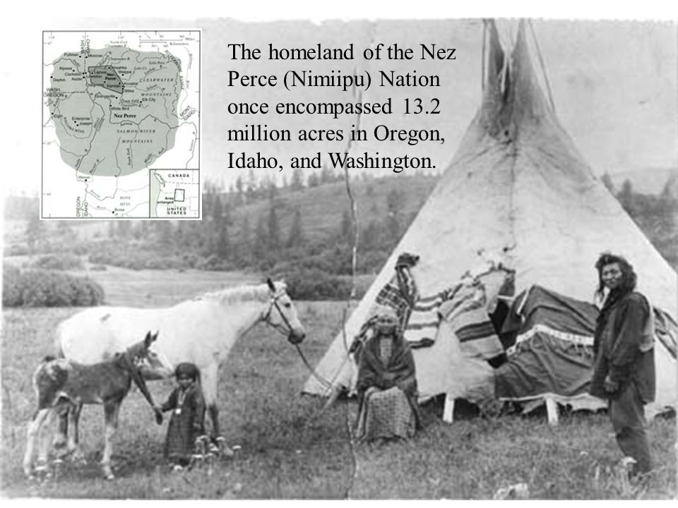 The homeland of the Nez Perce (Nimiipu) Nation once encompassed 13.2 million acres in Oregon, Idaho, and Washington.