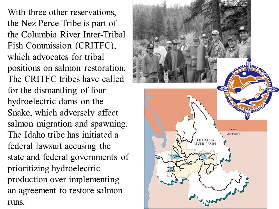 With three other reservations, the Nez Perce Tribe is part of the Columbia River Inter-Tribal Fish Commission (CRITFC), which advocates for tribal positions on salmon restoration.